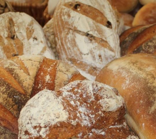 Hemp Flour Flavor, Texture, Uses?