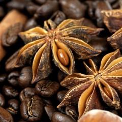 Organic Cacao & Cocoa