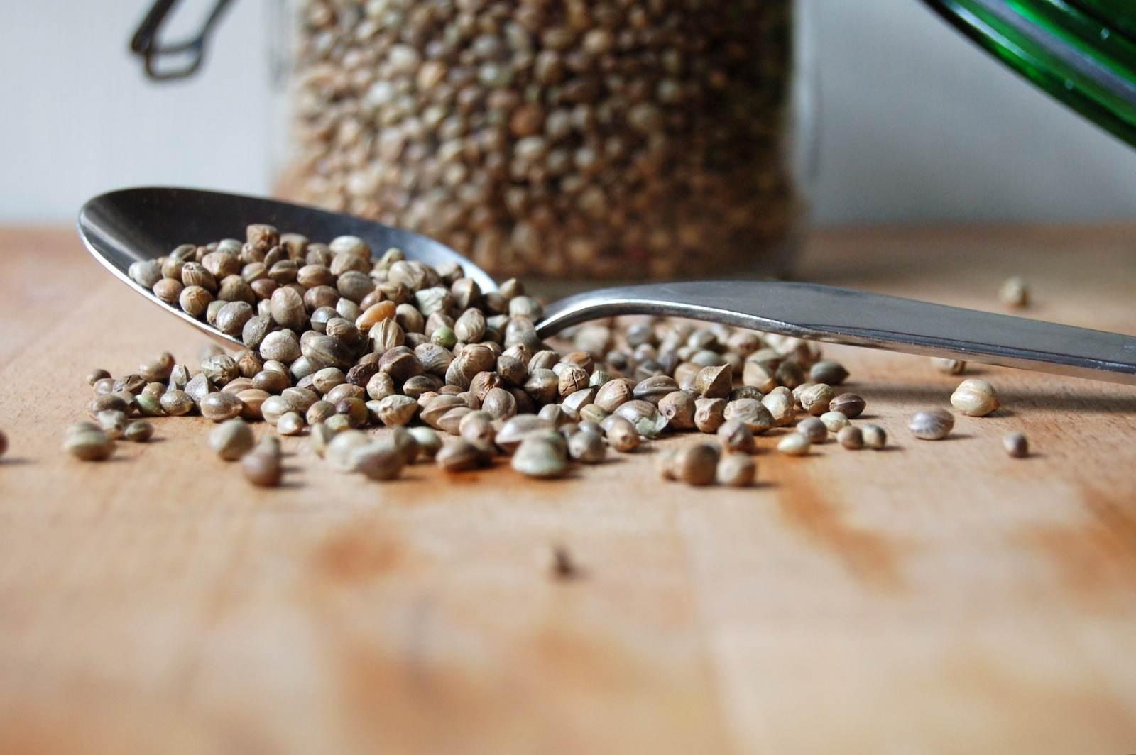 Roasted hemp seeds
