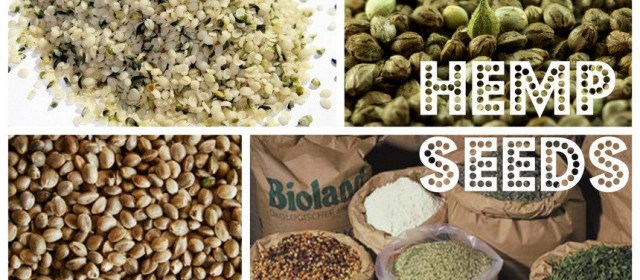 The Crunch? Conscious Foodies Wanna Know: Raw vs. Roasted Hemp Seeds?
