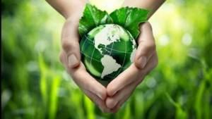 plant_global_food production