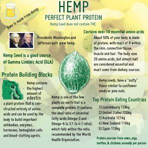Hemp_Protein_Nutrition2