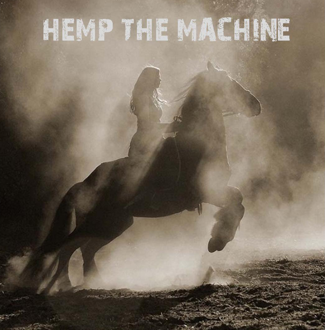 The Health Benefits of Hemp for our furry friends!